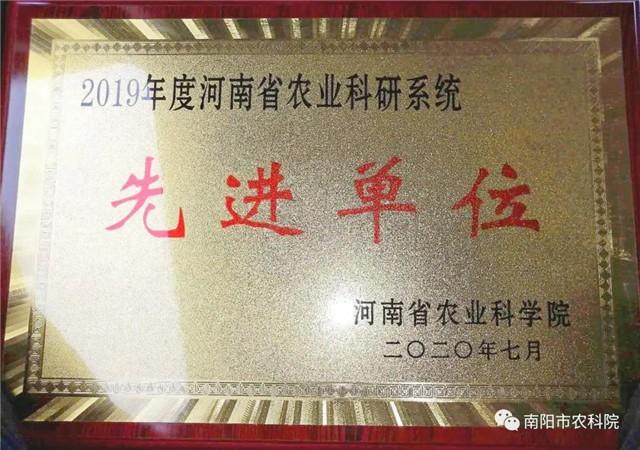 【喜讯】南阳市农科院获得2019年度河南省农业科研系统先进单位